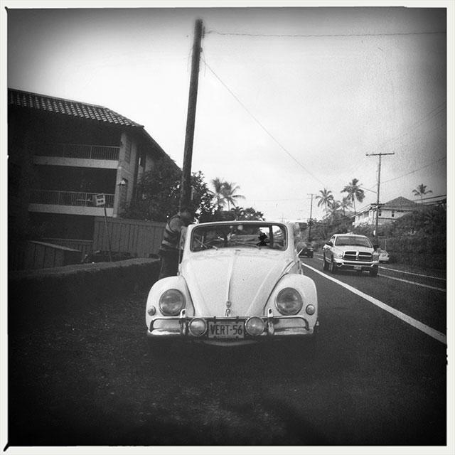 biest--beetle_3602